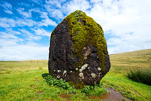 Maen Llia standing stone composed of intraformational conglomerate from Old Red Sandstone, attributed to the Bronze Age, Brecon Beacons National Park, Powys, Wales, UK, - Will Watson