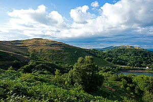 British Camp Iron-Age hill fort on the Herefordshire Beacon, Malvern Hills AONB, Herefordshire, viewed from Worcestershire, England, UK, August 2017.  -  Will Watson