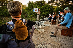 Visitors to Bracken Cave listening as Fran Hutchens, Bat Conservation International's director of Bracken Cave Preserve, gives educational information to visitors about the lives and existence of the... - Karine Aigner