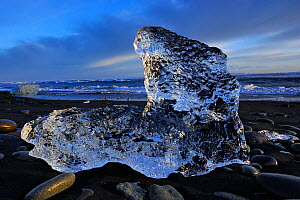 Ice on black volcanic sand beach, Jokulsarlon, southern Iceland, February 2015 - Jouan Rius