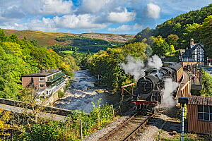 Steam train leaving Berwyn station beside the River Dee and the Chainbridge Hotel on the Llangollen Heritage Railway  to Corwen North Wales, UK, September 2017.  -  Alan  Williams