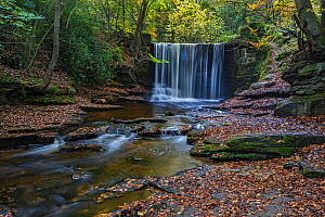 Weir on the River Clywedog, Plas Power Woods, Clywedog Trail in autumn near Wrexham, North Wales, UK, November 2017. - Alan  Williams