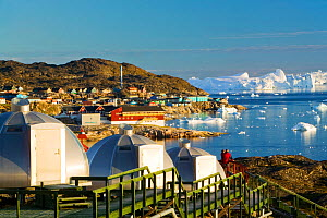Igloos outside the Arctic Hotel, Ilulissat UNESCO World Heritage Site,  Greenland. July 2008.  -  Ashley Cooper
