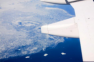 Ice bergs and sea ice of the Greenland ice, July 2008.  -  Ashley Cooper