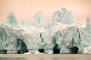 Icebergs from the Jacobshavn glacier or Sermeq Kujalleq, Greenland, July 2008. - Ashley Cooper
