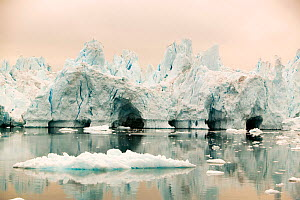 Icebergs from the Jacobshavn glacier or Sermeq Kujalleq, Greenland. July 2008.  -  Ashley Cooper