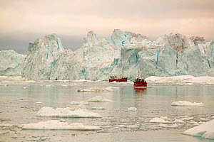 Tourist boat trips sail through Icebergs from the Jacobshavn glacier or Sermeq Kujalleq, Greenland, July 2008. - Ashley Cooper