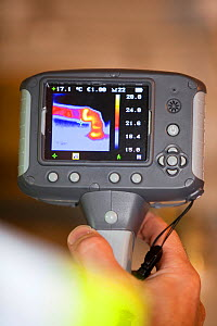 Thermal imaging camera showing heat loss from a hot water pipe.  -  Ashley Cooper