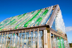 Greenhouse made from waste plastic drinks bottles in the community garden at Mount Pleasant Ecological Park, Porthtowan, Cornwall, UK.  -  Ashley Cooper