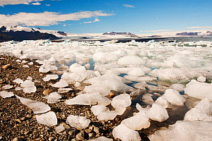 Jokulsarlon ice lagoon, Iceland. September 2010.  -  Ashley Cooper