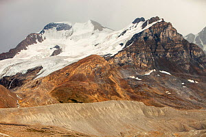 Lateral moraine showing the rate of retreat of the Athabasca glacier. The Athabasca glacier has lost 60 percent of its ice in the last 150 years. Rocky Mountains, Alberta, Canada. August 2012. - Ashley Cooper