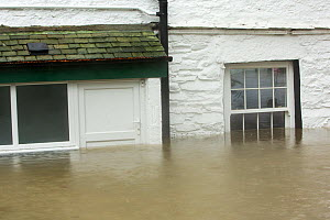 House surrounded by flood waters by the banks of the River Rothay in Ambleside, in the Lake District on Saturday 5th December 2015, during torrential rain from storm Desmond. England, UK, December 201... - Ashley Cooper