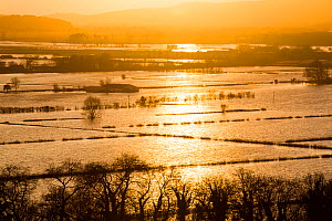 Sunrise over flooded farms in the Lyth Valley, during Storm Desmond. Cumbria, England, UK, 10th December 2015. - Ashley Cooper