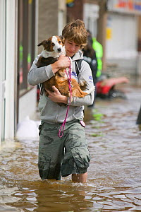 Man with carrying small dog through floodwaters, Bentley, South Yorkshire, England, UK, 28th July 2007.  -  Ashley Cooper