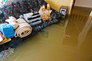Interior view of house during flooding, Toll Bar near Doncaster, South Yorkshire, England, UK,  28th July 2007.  -  Ashley Cooper