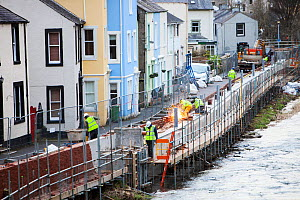 New flood defences in Cockermouth, Cumbria, UK. Built after the disastrous 2009 floods that inundated large parts of the town. They were completely overtopped by the floods from Storm Desmond December... - Ashley Cooper
