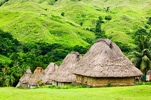 Navala village in the Fijian highlands, the only village left on the island still composed entirely of traditional Bure houses, Fiji, March 2007.  -  Ashley Cooper
