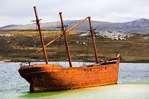 Shipwreck of the Lady Elizabeth on the outskirts of Port Stanley, the capital of the Falkland Island. February 2014. - Ashley Cooper