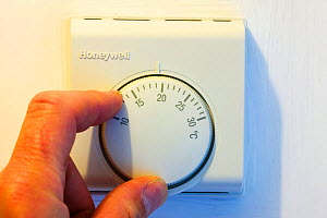 Setting the central heating thermostat at a cooler temperature to save energy. - Ashley Cooper
