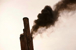 Exhaust emissions, the result of burning marine diesel in a ships engine. Marine diesel is one of the most polluting fuels in the world. - Ashley Cooper