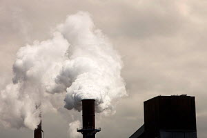 Emissions from the Bluescope steel works at Port Kembla, Wollongong, Australia. - Ashley Cooper