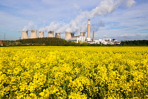 Ratcliffe on Soar, a massive coal powered power station in Nottinghamshire, with field of oilseed rape in foreground, UK, May 2008.  -  Ashley Cooper