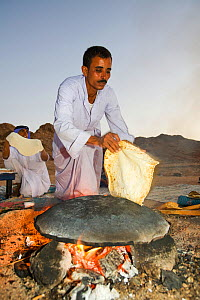 Bedouin man cooking bread on an open fire, Sinai Desert, Dahab,  Egypt. October 2008. - Ashley Cooper