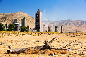 Cement works at Tehachapi Pass California, USA, September 2014. During drought drought killed trees in the foreground. Cement production is one of the most carbon hungry industries on the planet, driv...  -  Ashley Cooper