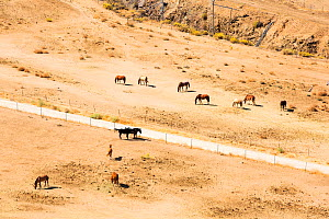 Drought conditions near Tehachapi Pass, in California's four year long drought, USA. September 2014. - Ashley Cooper
