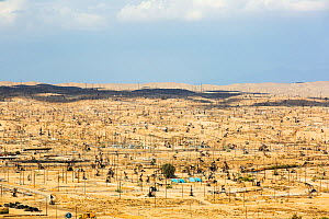 The Kern River oilfield in Oildale,  Bakersfield, California, USA. Following an unprecedented four year long drought, Bakersfield is now the driest city in the USA, driven by climate change. September... - Ashley Cooper