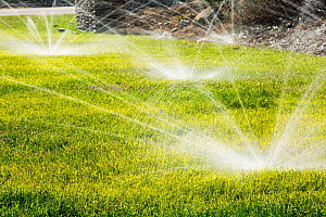 Sprinklers watering lawns during the worst drought in living memory, Fresno, California, USA. October 2014. - Ashley Cooper