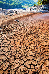 Mud cracks at Thirlmere reservoir in the Lake District during severe drought, England, UK. July 2010.  -  Ashley Cooper