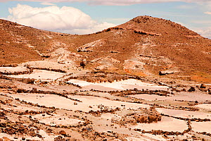 Field terraces above a Berber village in the Anti Atlas mountains of Morocco, North Africa. April 2012. In recent years, rainfall totals have reduced by around 75% as a result of climate change.  -  Ashley Cooper