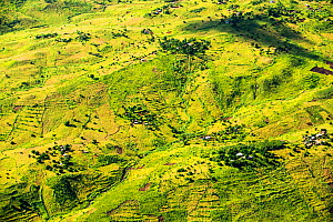 Aerial view of land deforested for agriculture, Malawi. March 2015. - Ashley Cooper