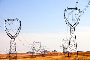 Electricity pylons across Inner Mongolia, Northern China, March 2009.  -  Ashley Cooper
