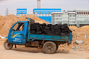 Lorries hauling coal to a coal fired power plant, Dongsheng, Inner Mongolia, China. March 2009. In 2008 China officially became the worlds largest emitter of greenhouse gases. - Ashley Cooper