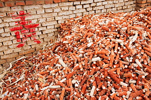 Maize husks that are used as a renewable fuel to burn on household stoves, northern China, March 2009. - Ashley Cooper