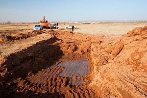 Digger excavating  lake bed to try and find water during drought, Hong Hai Zai, Inner Mongolia, China. March 2009.  -  Ashley Cooper