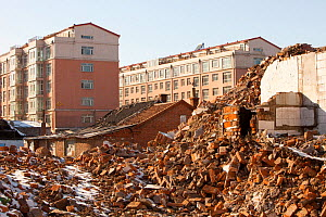Demolition of house to make way for modern high rise apartment blocks, Suihua, Heilongjiang province, China, March 2009. - Ashley Cooper