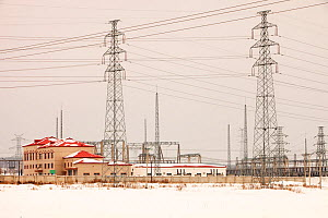 Electricity pylons, Northern China, March 209.  -  Ashley Cooper