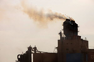 Coal fired cement factory billows smoke in Inner Mongolia, China. March 2009. - Ashley Cooper