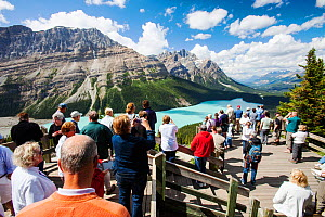 Tourists overlooking the Peyto Lake, Banff National Park, Canadian Rockies, Alberta, August 2012. - Ashley Cooper