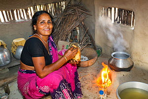 Woman cooking on a traditional clay oven, fuelled by biofuel (rice stalks) Sunderbans, Ganges Delta, Eastern India. December 2013. - Ashley Cooper