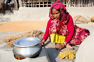 A woman subsistence farmer cooking on a traditional clay oven, using rice stalks as biofuel in the Sunderbans, Ganges Delta, India.  All parts of the rice crop are used, and the villager's life is ver... - Ashley Cooper