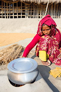Woman subsistence farmer cooking on a traditional clay oven, using rice stalks as biofuel in the Sunderbans, Ganges Delta, India. December 2013. - Ashley Cooper