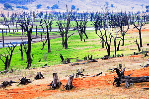 Lake Hume, the largest reservoir in Australia during the drought which lasted from 1996-2011.  In this image the water was at at 19.6% capacity, but at its worse point it was at 2.1% New South Wales,... - Ashley Cooper