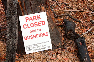 Park Closed sign in the Snowy Mountains,  closed due to bush fires, Australia. February 2010. - Ashley Cooper