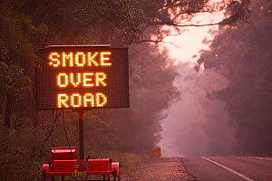 Smoke warning sign by road, at dawn near Orbost, New South Wales, Australia. March 2010. - Ashley Cooper