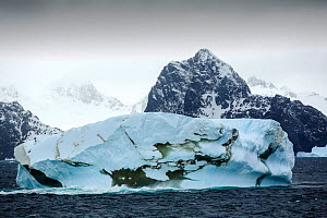 Icebergs off the South Orkney Islands, just off the Antarctic Peninsula.  -  Ashley Cooper