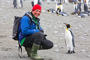 King penguin (Aptenodytes patagonicus) , with passenger from an expedition cruise, Salisbury Plain, South Georgia, Antarctica, February 2014.  -  Ashley Cooper